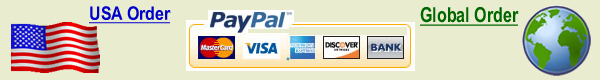 Secure Payment Gateway Pay Pal USA & Global Orders